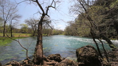 Missouri Current River through trees at Big Spring c Stock Footage
