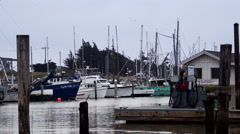 Early morning at wharf Stock Footage