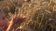 Adorable boy, little hands up, adult hand pouring wheat seeds, rich harvest  Stock Footage