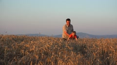 Father and son having fun together, activities, games, swimming in wheatfield Stock Footage