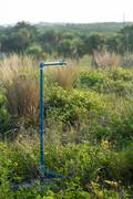 Faucet tap and blue water pipe in vegetation Stock Photos