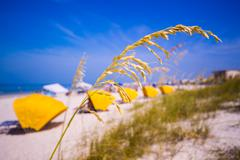 Madiera beach and sea oats in florida Stock Photos