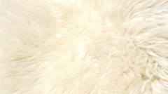 A white color lambskin Stock Footage