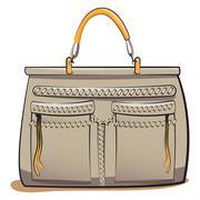 Vector gray ladies handbag Stock Illustration