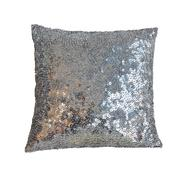glittering pillow - stock photo