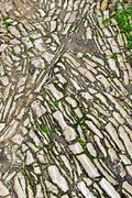 cobble stone - stock photo