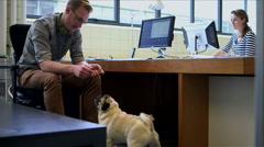 Businessman petting dog Stock Footage