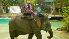 Luang prabang, laos - circa dec 2013: elephant riding through the woods and t Stock Footage