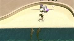 The Mirage Las Vegas Pools Stock Footage