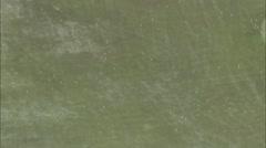 Golf Course Putting Green Vegas Stock Footage