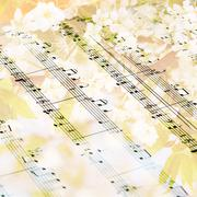 music sheet against flowering tree- background - stock photo