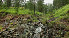 Mountain Tara - Serbia - creek in the forest on foggy day Stock Footage