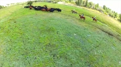 Stock Video Footage of Aerial Shot of Ranchers hearding Cattle 1