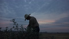 COWBOY RANCHER, shaking hands, silhouette Stock Footage