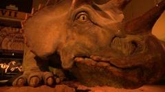 Dinosaur at museum Stock Footage