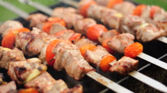 HD720p24 Shashlik cooking over an open fire Stock Footage