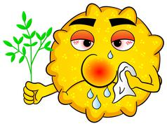 pollen with hay fever - stock illustration