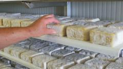 0431 Worker in a cheese factory working on cheeses aging Stock Footage