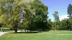 norwegian park in full sun in summer - stock footage