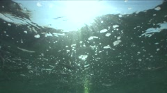 Fish passage collects oxygen from the surface of the sea Stock Footage