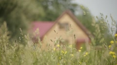 Grass and house Stock Footage