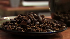 Shells of nuts Stock Footage