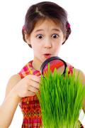 girl looking through a magnifier at the grass - stock photo