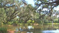 Brookgreen Gardens Pond - stock footage