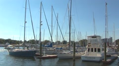 Sailboats in Annapolis Harbor Stock Footage