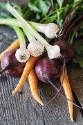 Fresh beetroot, carrot and young garlic Stock Photos