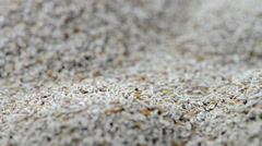 Portion of psyllium seeds (loopable) Stock Footage