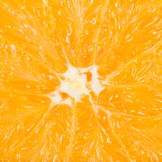 macro photo of an orange fruit - stock photo