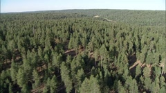 Forest Mountains River - stock footage