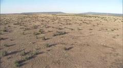 Stock Video Footage of Desert Shrubs Arizona