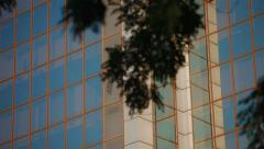 View office building from the bottom of the bushes - stock footage