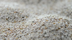 Portion of psyllium seeds (not loopable) Stock Footage