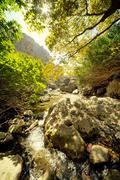 Waterfall in the forest Stock Photos