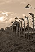 auschwitz birkenau concentration camp. - stock photo