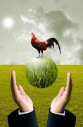 Stock Illustration of businessman show the green planet with chicken, organic farm concept