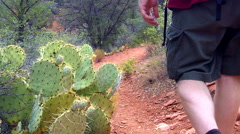 Hiker In Red Rock State Park Past Prickly Pear Cactus- Sedona AZ Stock Footage