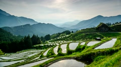 Rice Terraces in Kumano, Japan - stock footage