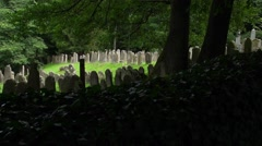 Old Jewish Cemetery in Floss, South Germany, Tracking Shot, Full-HD Stock Footage