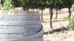 Wine Barrel in a Vineyard Stock Footage