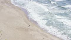 Aerial view of horse riders on Californian coast Stock Footage