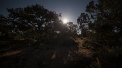 Moonrise with moving shadow of trees Stock Footage