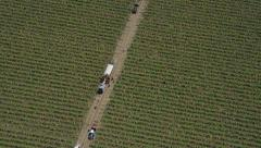 Aerial shot of workers on Agricultural farm California - stock footage