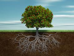 conceptual tree with apple and root - stock illustration