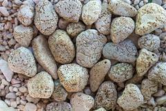 holey stones on a beach - stock photo