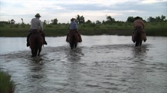 Cowboys on Horses Crossing River 2 Stock Footage