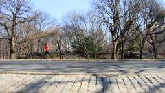 Central Park Running Cycling Walking in the Morning HD Stock Footage